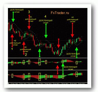 Bet on markets